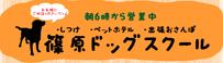 篠原ドッグスクール